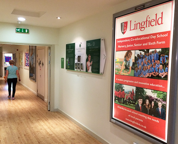 Lingfield 6 sheet in health centre